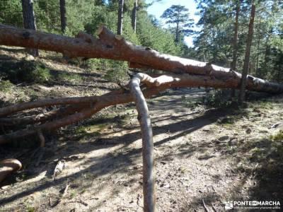 Calzada Romana - Fuenfría-Cercedilla; viajes en fin de año ruta por patones plano de la pedriza ag